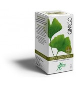 Ginkgo Concentrado 500 Mg
